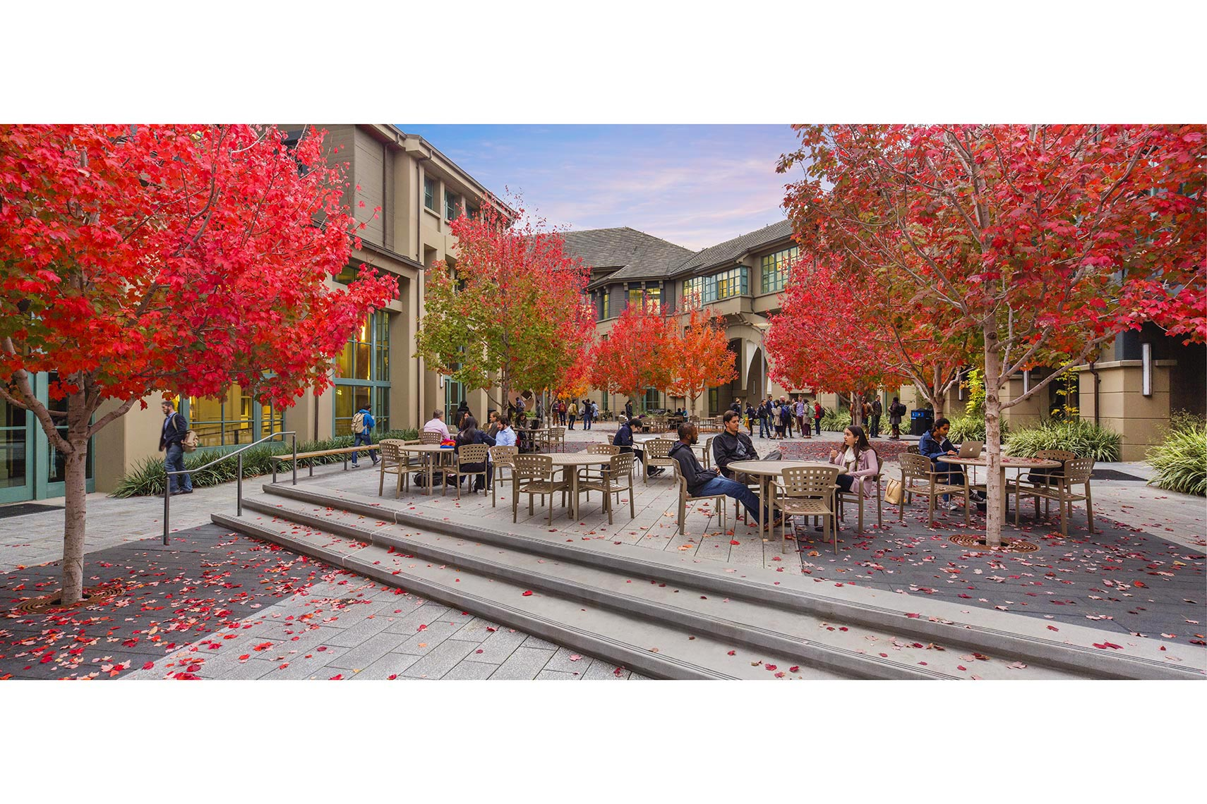 2015_Haas_Fall_Courtyard_0946_Web3